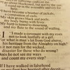 A Covenant With My Eyes (Job 31)